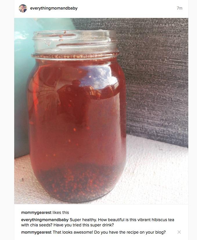 Hibiscus-Chia-Tea-Drink